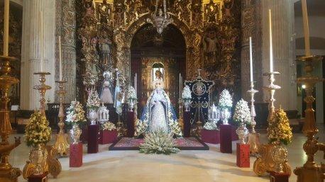 Besamanos a la Virgen de la Merced de Pasión // Hermandad