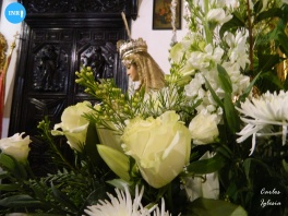 Besamanos extraordinario a la Virgen de la Merced de San Gregorio // Carlos Iglesia
