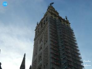 Obras en la Giralda // Carlos Iglesia