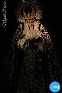 Veneración del Cristo del Amor y la Virgen del Socorro // Miguel D'Herbe