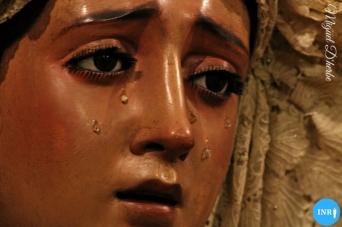 Veneración de la Virgen de Montserrat // Miguel D'herbe